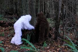 Bigfoot Halloween Costume Kids Sasquatch Albino Sasquatch Celebrate Fo U2026 Flickr