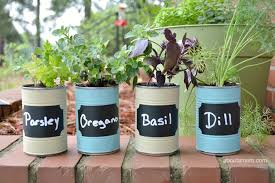 kitchen herb garden ideas diy kitchen herb garden gift idea about a