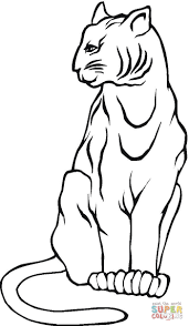mountain lion coloring page free printable coloring pages