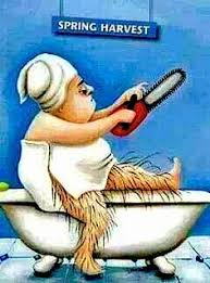 Meme Hair Removal - funny hair removal google search variado pinterest funny