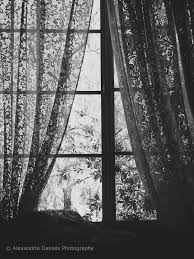 black lace curtains it u0027s all black and white pinterest