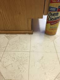 Dog Urine Hardwood Floors Vinegar by Cleaning Linoleum Floors Oven With Lye Spray And Let Set
