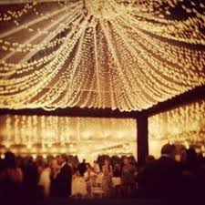 1200 white strand lights lights lights and reception
