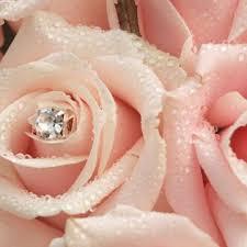 wedding flowers flowers