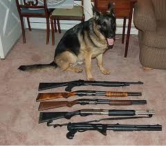 member shotgun pictures archive militaryfirearm