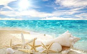 download beach wallpaper 3ef verdewall