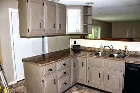 paint ideas for kitchen gorgeous kitchen cabinet painting ideas painted kitchen cabinets