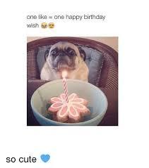 Cute Birthday Meme - one like one happy birthday wish so cute birthday meme on me me