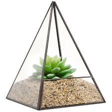 modern glass pyramid tabletop succulent plant terrarium box air