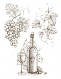 pencil drawing of wine bottle and grape crafting pinterest