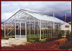 commercial greenhouse kits greenhouses large greenhouses custom