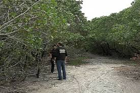 Corpo de mulher morta a pedradas é encontrado em manguezal na ...