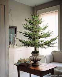 trim a tree how to martha stewart