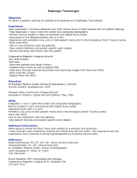 Examples Of Additional Information On Resume by Examples Of Effective Resumes