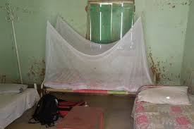 Travel Mosquito Net For Bed Why You Travel And Use A Mosquito Net White Monkey Travels