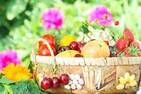fruit delivery service fruit delivery santa rosa organic fruit fruit delivery service