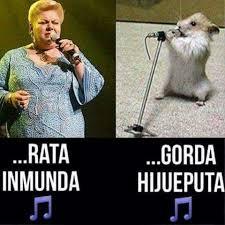 Meme Mexicano - 401 best memes images on pinterest meme memes and amor