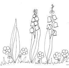 coloriage de branches de muguet  Tête à modeler