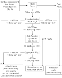 ers ests clinical guidelines on fitness for radical therapy in