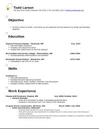Resume Objective Statements Samples Catchy Resume Objective Examples Resume Template Pinterest