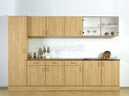 changer les portes des meubles de cuisine changer les portes de cuisine porte de placard cuisine charming