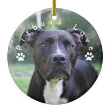pitbull ornaments keepsake ornaments zazzle