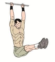 Leg Raise On Bench Leg Raises Exercise Excellent Lower Abdominal Exercise