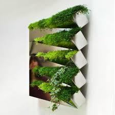 Indoor Herbal Garden Indoor Herb Gardens And Salad Walls Inspiration