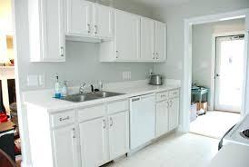 Best Hinges For Kitchen Cabinets Kitchen Cabinets Hinges Kitchen Cabinet Door Hinges Best Kitchen