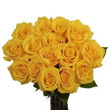color roses globalrose fresh yellow color roses 100 stems gold strike medium
