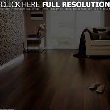 Sticky Back Laminate Flooring Laminated Flooring Astonishing Clean Laminate Floors Samples How