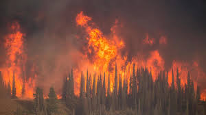 How To Get Wildfire Cases Fast by Idaho Wildfire Grows Quickly Could Keep Burning Until October