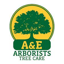 why tree trimming certified arborist tree pruning plan