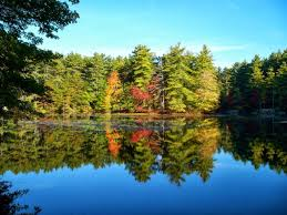 Harold Parker State Forest Map by Fall Has Arrived At Harold Parker State Forest North Reading Ma