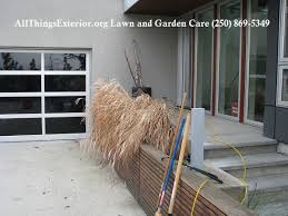when to cut ornamental grasses in the okanagan valley