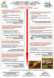 chambre d agriculture du tarn chambre d agriculture du tarn formation des chiens de troupeau association tarnaise pour l