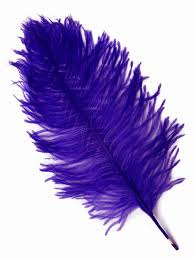 purple feather ostrich feather decorations shopwildthings