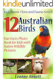 12 australian insects book about insects animal facts