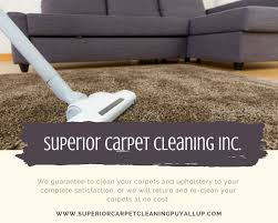 Where To Buy Upholstery Cleaner 2083 Best Carpet And Upholstery Cleaning Images On Pinterest