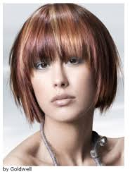 hair color put your picture 8 commonly asked questions about coloring your hair empire