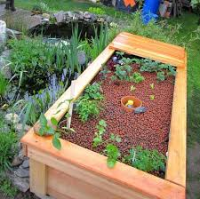 aquaponic grow bed as a filter for ornamental pond ponnod