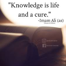 schöne islam sprüche 391 besten quotes islamic hadith bilder auf imam ali