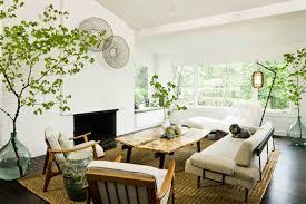 zen decor enticing corner potted plant for natural zen decor using modern