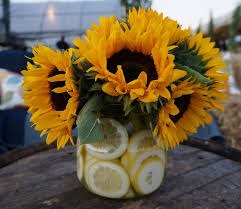 Sunflower Centerpieces None Such Farm To Table Dinner For Bucks County Children U0027s