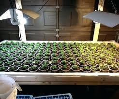 plant grow lights lowes plant grow lights lowes dejavutv club