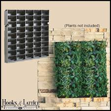 diy living wall vertical gardening hooks and lattice