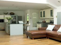 kitchen and living room ideas living room ideas brown sofa home design by