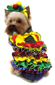 Cheap Dog Costumes Halloween Halloween Dog Costumes Small Dog Costumes Large Dog Costumes