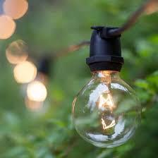 lights g50 transparent clear 7 watt replacement bulbs