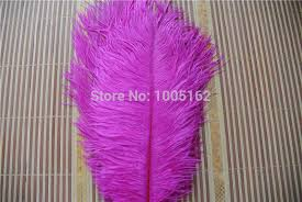 Ostrich Feather Centerpieces Wholesale by Compare Prices On Ostrich Feathers Centerpieces Wholesale Online